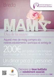 Breda - Dia de la mare 2015
