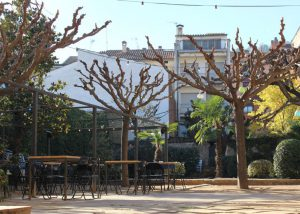 CAFE JARDI TORRES   HOTEL TORRES
